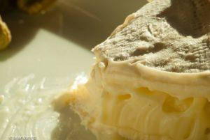 How to tell if the Cream Cheese is bad