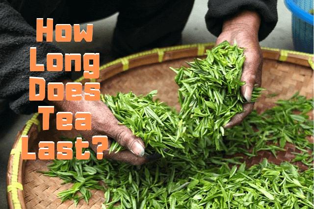 How Long Does Tea Last?