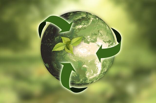 Recycling Green Tea