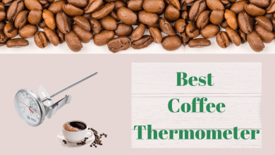 Best Coffee Thermometer
